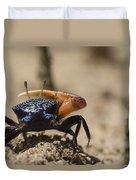 Fiddler Crab Living In A Sandy Tidal Duvet Cover