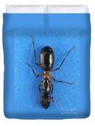 Field Ant Duvet Cover