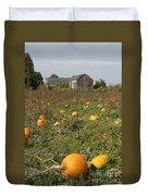 Field Of Pumpkins Duvet Cover