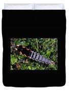 Firefly Larva Duvet Cover