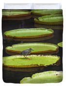 Fisher Bird On Giant Lily Pad In Pond Duvet Cover