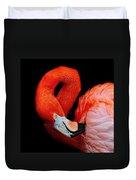 Flamingo Preening Duvet Cover