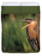 Fledgling Great Blue Heron Duvet Cover