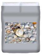 Florida Shells Duvet Cover