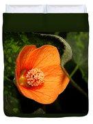 Flowering Maple Singe Flower Duvet Cover