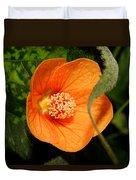 Flowering Maple Single Flower 2 Duvet Cover