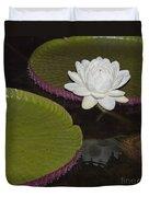 Victoria Amazonica White Flower Duvet Cover