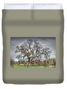 Folsom Oak Tree Duvet Cover