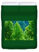 Forest Illuminates In The Sunlight  Duvet Cover