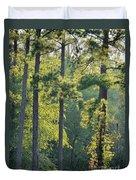 Forest Illumination At Sunset Duvet Cover