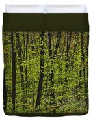 Forest In Spring Foliage, Six Mile Lake Duvet Cover