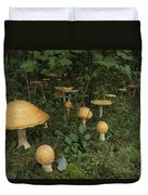 Forest Mushrooms Sprout Duvet Cover
