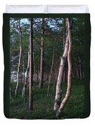 Forest, Shore Of Lake Superior Duvet Cover