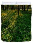 Forest Sunset Duvet Cover by Steve Gadomski