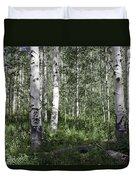 Forever Aspen Trees Duvet Cover