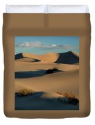 Form And Light At Death Valley Duvet Cover
