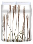 Fountain Grass In White Duvet Cover by Steve Gadomski