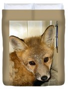 Foxy Broad Duvet Cover