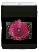 Framed Fuchsia Cactus Flower Duvet Cover