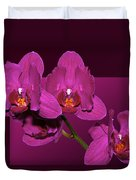 Framed Orchids Duvet Cover