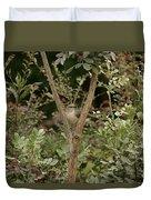 Framed V2 Duvet Cover