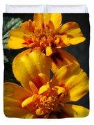French Marigold Named Starfire Duvet Cover