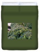 Fresh Broccoli Duvet Cover by Susan Herber