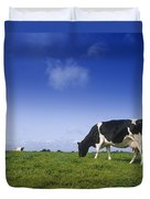 Friesian Cow Grazing In A Field Duvet Cover