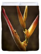 Frog And Heliconia Duvet Cover