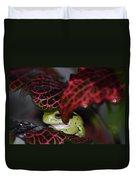 Frog On A Leaf Duvet Cover