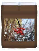 Frozen Mountain Ash Berries Duvet Cover