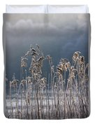 Frozen Reeds At The Shore Of A Lake Duvet Cover