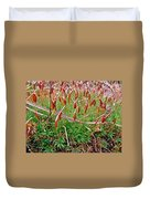 Fruiting Moss - Red And Green Tableau Duvet Cover