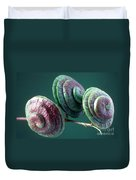 Fruits Of Wild Lucerne Duvet Cover by Nuridsany et Perennou and Photo Researchers