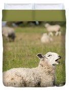 Funny Sheep Duvet Cover