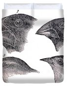 Galapagos Finches Duvet Cover