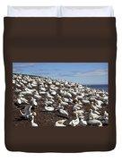 Gannet Colony Duvet Cover