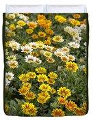 Gazania Gazania Rigens Flowers Duvet Cover
