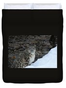 Gaze Of The Snow Leopard Duvet Cover