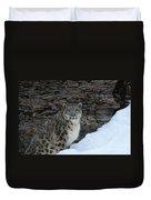Gaze Of The Snow Leopard Duvet Cover