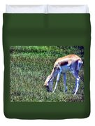 Gazelle Duvet Cover