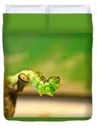 Geometrid Larvae 2 Duvet Cover