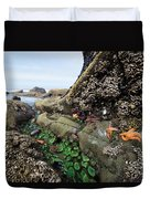 Giant Green Sea Anemone Anthopleura Duvet Cover