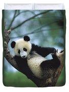 Giant Panda Cub Resting In A Tree Duvet Cover