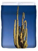 Giant Saguaro Cactus Portrait With Blue Sky Duvet Cover