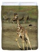 Giraffe Giraffa Camelopardalis Juvenile Duvet Cover