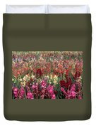 Gladioli Garden In Early Fall Duvet Cover