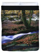Glenmacnass Waterfall, Co Wicklow Duvet Cover