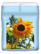 Glory Glory Sunflower Duvet Cover
