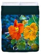 Glowing Nasturtiums 1 Duvet Cover